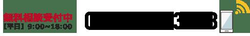 03-3593-3313